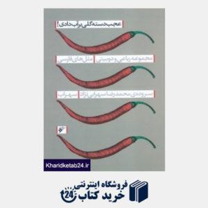 کتاب عجب دسته گلی بر آب دادی (مجموعه رباعی و دو بیتی مثل های فارسی)